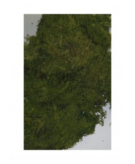 boîte de 45gr de mousse d'Islande - vert foncé ( 606240 )