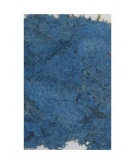 boîte de 45gr de mousse d'Islande - bleu ( 606248 )